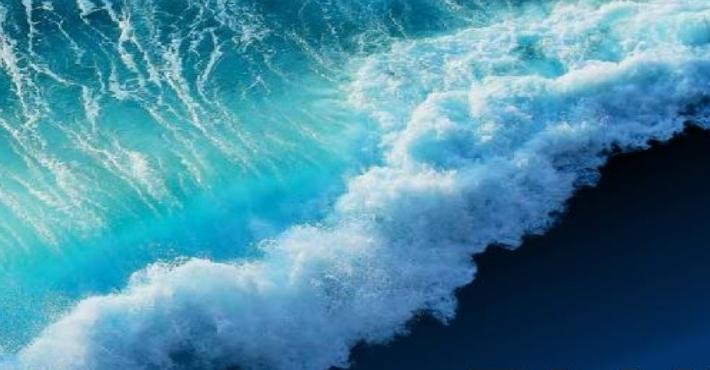 MISTRAL MED: Blue Business Plan Competition